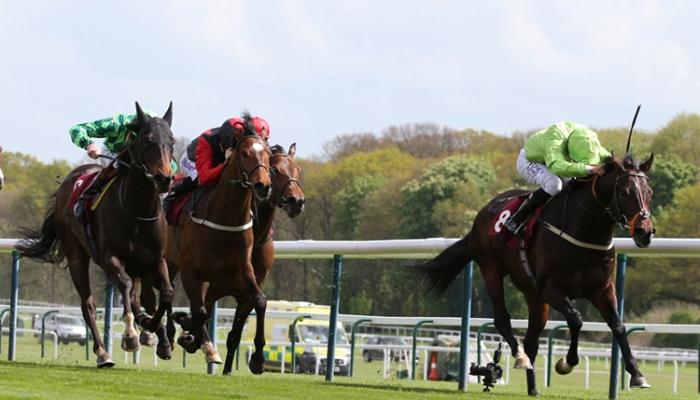 Haydock Racecourse