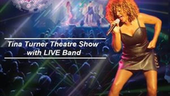 The Tina Turner Experience