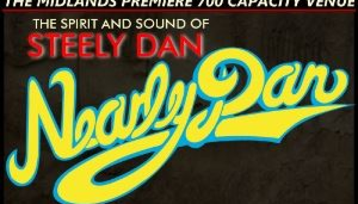 Nearly Dan in Concert - 22nd Anniverary
