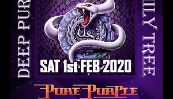Deep Purple Family Tree feat Whitesnake
