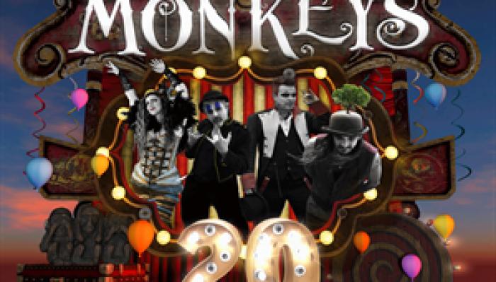 3 Daft Monkeys 20 year celebration night