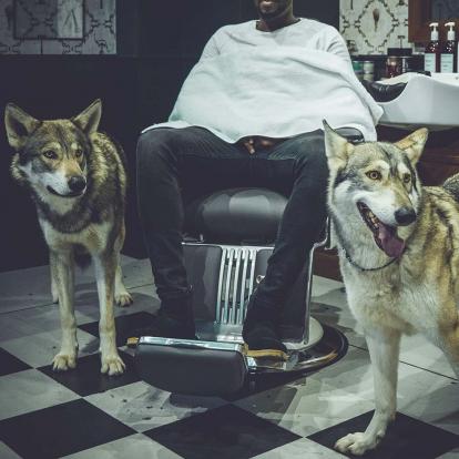 RW Wolf Barbers