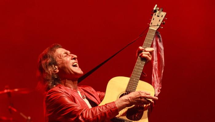 Albert Hammond In Concert