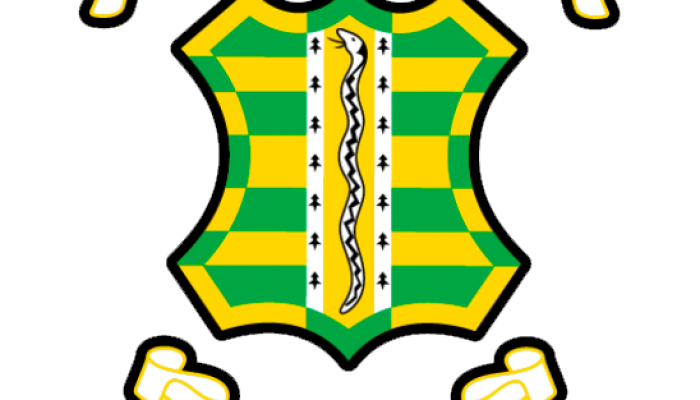 Vipers Rugby Football Club