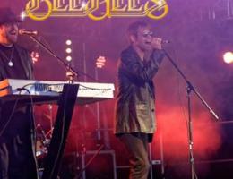 Bee Gees Tribute Night Longbridge