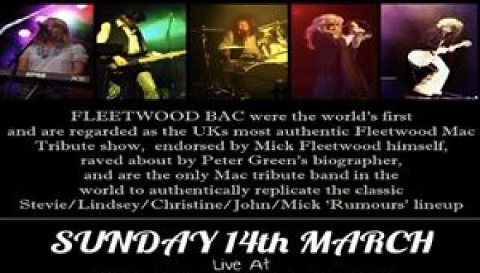 FLEETWOOD BAC - TRIBUTE TO FLEETWOOD MAC