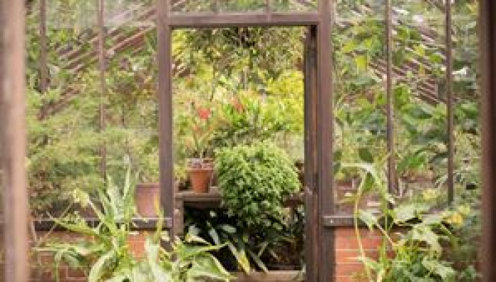 Chelsea Physic Garden - Behind The Scenes