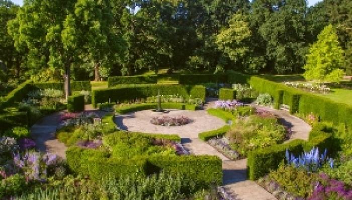 A Midsummer Night's Dream - The Savill Garden