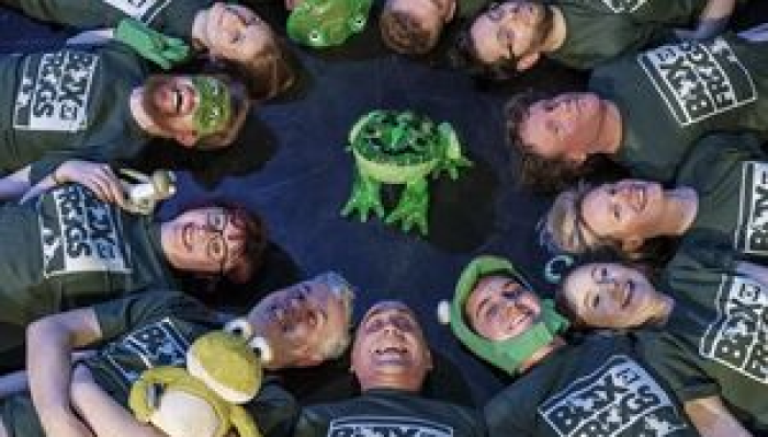 Improv Comedy with Box Of Frogs